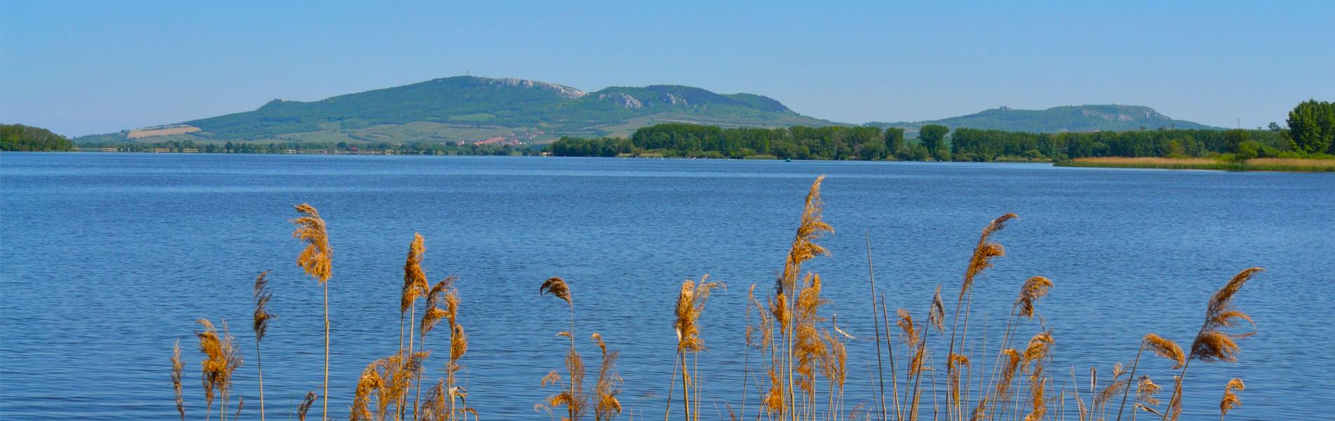 Jezera-plná-ryb-..